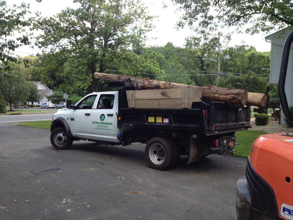 Bergen County NJ tree removal
